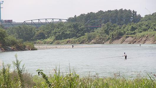 相模川 鮎釣り